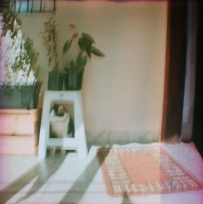 filme_427_05